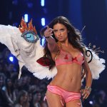 adriana-lima-lors-du-victorias-secret-fashion-show